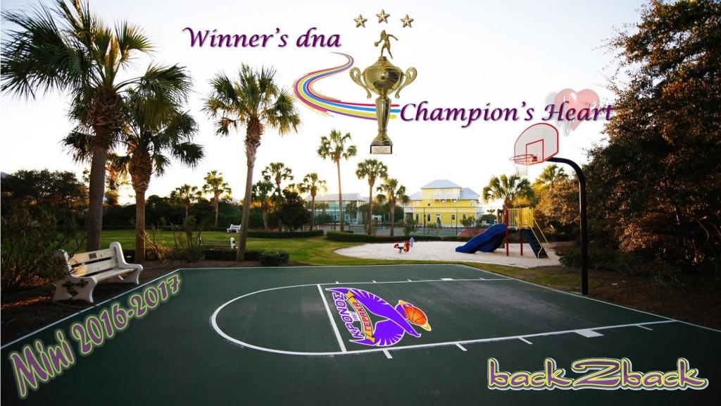 Mini_2016-2017_Winners_dna_Champions_Heart